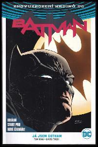 Batman : Kniha první : Já jsem Gotham