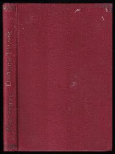 Dvojice břízek - korutanský román