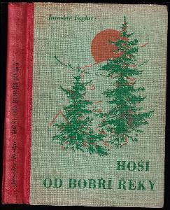 Hoši od Bobří řeky - kniha pro chlapce, kteří se chtějí přesvědčiti o svých vlastnostech