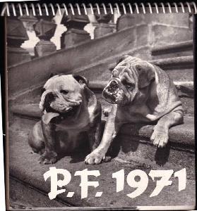 P.F.1971