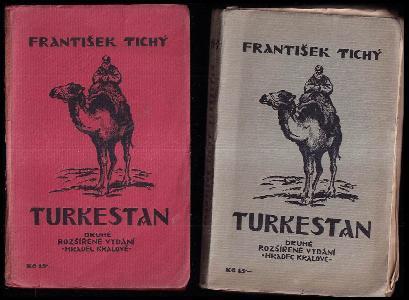 Turkestan : 1915-1920